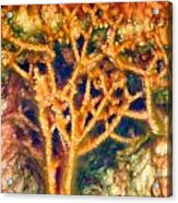 Mineral Branches Hot Springs Acrylic Print