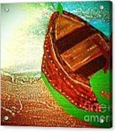 Mini Ark Acrylic Print by Dori Meyers