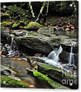 Mini Waterfalls Acrylic Print by Kaye Menner