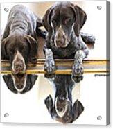 Mirror Mirro Acrylic Print