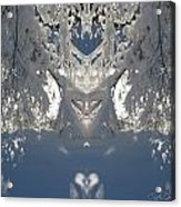 Mirror Of Snow  Acrylic Print