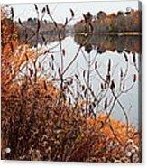 Mirror Smooth River Acrylic Print