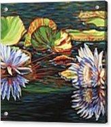 Mirrored Lilies Acrylic Print