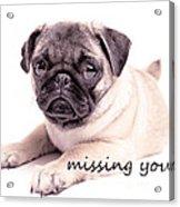 Missing You... Acrylic Print by Edward Fielding