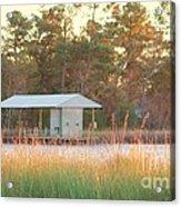 Mississippi Bayou 3 Acrylic Print