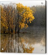 Mississippi Color Acrylic Print