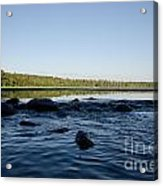 Mississippi Headwater And Lake Itasca Acrylic Print