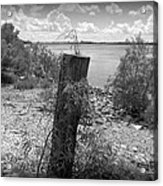 Mississippi River - Bw Acrylic Print
