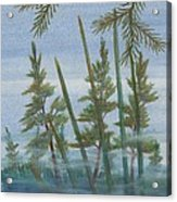 Mist In The Marsh Acrylic Print
