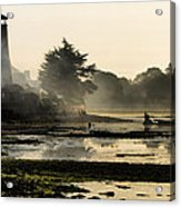 Mist On The Morning Tide Acrylic Print by Trevor Wintle