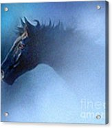 Mist Runner Acrylic Print