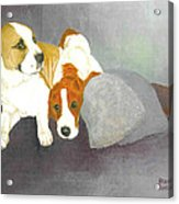 Mista And Chester Acrylic Print
