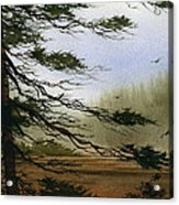 Misty Forest Bay Acrylic Print