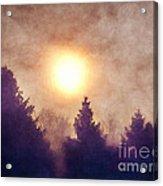 Misty Forest Sunrise Acrylic Print