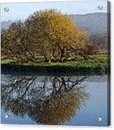 Misty Golden Sunrise Reflection Acrylic Print
