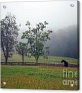 Misty Morning At The Farm Acrylic Print