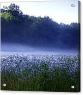 Misty Morning At Vally Forge Acrylic Print