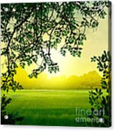 Misty Morning Acrylic Print by Bedros Awak