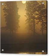 Misty Morning I Acrylic Print