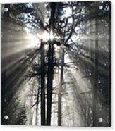Misty Morning Sunrise Acrylic Print