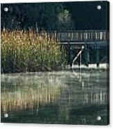 Misty Pond Acrylic Print