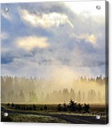 Misty Spring Morning Acrylic Print