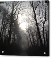 Misty Trail Acrylic Print by Stephanie  Varner