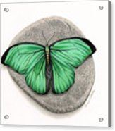 Mito Awareness Butterfly- A Symbol Of Hope Acrylic Print