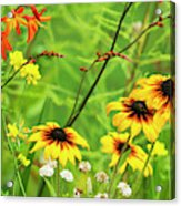 Mixed Flowers Bloom In A Garden Acrylic Print