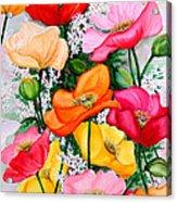 Mixed Poppies Acrylic Print