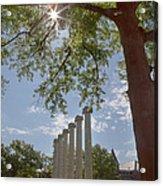 Mizzou Columns Sunflare Acrylic Print