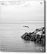Mobile Bay 10 Acrylic Print