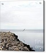 Mobile Bay 7 Acrylic Print