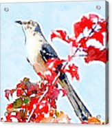Mockingbird In The Leaves - Watercolor Acrylic Print