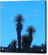 Mohave Blue Acrylic Print
