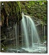 Mohawk Streams And Roots Acrylic Print