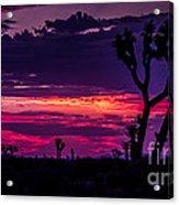 Mojave Desert Sunrise Acrylic Print