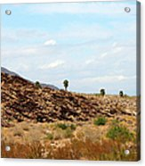 Mojave Desert Landscape Acrylic Print