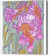 Mojave Willow Acrylic Print by Maria Arango Diener