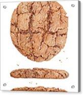 Molasses Cookie Acrylic Print