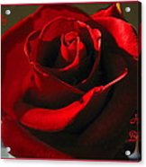 Mom's Red Rose Happy Birthday Wife Acrylic Print