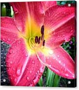 Mom's Secret Garden Acrylic Print