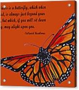 Monarch Butterfly Pismo Beach Acrylic Print