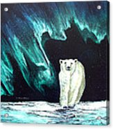 Monarch of His Arctic Domain Acrylic Print