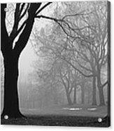 Monarch Park - 321 Acrylic Print