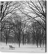 Monarch Park Ground Fog Acrylic Print