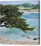 Monastery Beach Acrylic Print