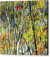 Monet Lives On Acrylic Print