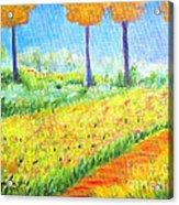 Monet's Garden Path Acrylic Print