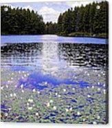 Monet's Prelude Acrylic Print